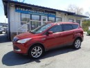 Used 2014 Ford Escape SE for sale in Halifax, NS