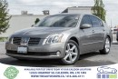 Used 2006 Nissan Maxima SE w/5-Seat for sale in Caledon, ON