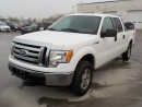 Used 2012 Ford F-150 XLT for sale in Innisfil, ON