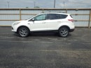 Used 2013 Ford ESCAPE SEL ECOBOOST 4WD for sale in Cayuga, ON