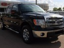 Used 2014 Ford F-150 V6, SIRIUS, USB for sale in Edmonton, AB