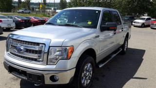 Used 2014 Ford F-150 XTR for sale in Quesnel, BC