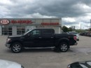 Used 2014 Ford F-150 XLT for sale in Owen Sound, ON