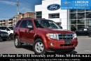 Used 2010 Ford Escape XLT 4WD - BLUETOOTH - LEATHER - HEATED FRONT SEATS for sale in Ottawa, ON