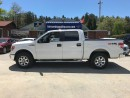 Used 2014 Ford F-150 XLT for sale in Flesherton, ON