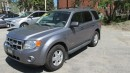 Used 2008 Ford Escape XLT for sale in Chatsworth, ON