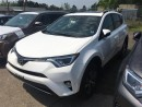 New 2017 Toyota RAV4 AWD XLE BASE for sale in Kentville, NS