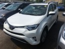 New 2017 Toyota RAV4 AWD LIMITED PLATINUM PACKAGE for sale in Kentville, NS