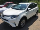 New 2017 Toyota RAV4 HYBRID LIMITED TECHNOLOGY PACKAGE for sale in Kentville, NS