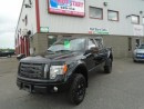 Used 2010 Ford F-150 FX4 for sale in Sudbury, ON