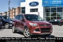 Used 2014 Ford Escape TITANIUM - LEATHER - BLUETOOTH - BLIND SPOT DETECTION - AUTOMATED PARKING SYSTEM for sale in Ottawa, ON