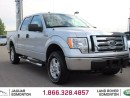 Used 2009 Ford F-150 XLT 4x4 SuperCrew - Local One Owner Trade In | No Accidents | Very Low KMs | Remote Starter | 17 Inch Wheels | Climate Control with AC | AUX Input | All Power Options | Running Boards | Very Good Condition | 6 Seater/Front Bench | Trailer Brake | Trailer  for sale in Edmonton, AB