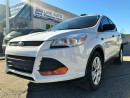 Used 2014 Ford Escape BACK CAMERA/BLUETOOTH/CLEAN CARPROOF/CERTIFIED for sale in Concord, ON