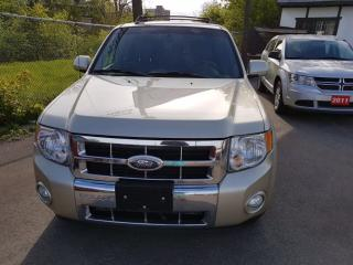 Used 2010 Ford Escape Limited NO ACCIDENT ONTARIO CAR for sale in Brampton, ON