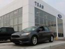 Used 2016 Ford Focus SE DEALER DEMO for sale in Edmonton, AB