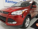 Used 2013 Ford Escape SE Ecoboost with NAV and keyless entry for sale in Edmonton, AB