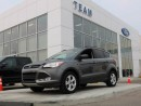 Used 2014 Ford Escape SE 4WD NAV for sale in Edmonton, AB