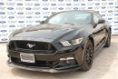 Used 2017 Ford Mustang GT Premium for sale in Welland, ON