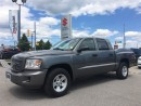 Used 2011 Dodge Dakota SXT Crew 4X4 ~Low Km's ~Loaded ~V-8 for sale in Barrie, ON