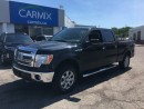Used 2013 Ford F-150 XLT XTR for sale in London, ON