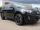 Used 2014 Ford Edge DUAL SUNROOF, BACKUP CAM, HEATED SEATS, SIRIUS for sale in Edmonton, AB