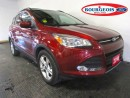 Used 2014 Ford Escape *CPO* SE 2.0L 4CYL for sale in Midland, ON