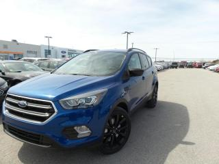 Used 2017 Ford Escape SE 2.0L ECO 201A for sale in Midland, ON