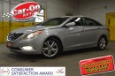 Used 2011 Hyundai Sonata LIMITED LEATHER SUNROOF NAV LOADED ONLY 46000KM for sale in Ottawa, ON