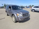 Used 2008 Ford Escape XLT for sale in Edmonton, AB