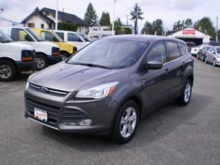 Used 2014 Ford Escape SE, awd, new tires, for sale in Surrey, BC