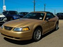Used 2000 Ford Mustang Base 2dr Convertible for sale in Edmonton, AB