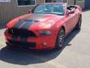 Used 2010 Ford Mustang Shelby GT500 for sale in Tilbury, ON