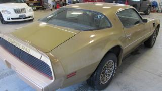 Used 1979 Pontiac Trans Am USA car, low miles, solid body, paint as found for sale in Chatsworth, ON