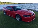 Used 2002 Ford Mustang GT SALEEN S281 Only 60000 km for sale in Perth, ON
