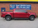 Used 2014 Ford F-150 FX4 for sale in Hanover, ON