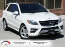 Used 2013 Mercedes-Benz ML 350 ML 350 BlueTEC | AMG | Navigation | Sunroof for sale in North York, ON