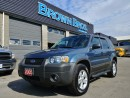 Used 2005 Ford Escape XLT for sale in Surrey, BC