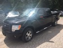 Used 2009 Ford F-150 FX4 for sale in Hornby, ON