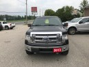 Used 2013 Ford F-150 XLT for sale in Paris, ON