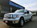 Used 2009 Ford F-150 XLT for sale in Surrey, BC