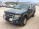 Used 2010 Ford Escape LTD for sale in Innisfil, ON