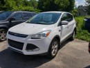 Used 2014 Ford Escape SE for sale in Orillia, ON