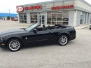 Used 2013 Ford Mustang V6 Premium for sale in Owen Sound, ON