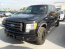 Used 2009 Ford F-150 FX4 for sale in Innisfil, ON