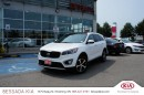 Used 2016 Kia Sorento AWD EX+ V6 (7-Seater) for sale in Pickering, ON