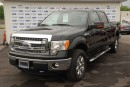 Used 2014 Ford F-150 XLT for sale in Welland, ON