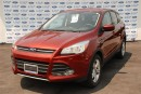 Used 2014 Ford Escape SE for sale in Welland, ON