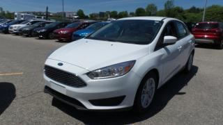 New 2017 Ford Focus SE, Alloys, Winter Pkg, Sync for sale in Stratford, ON