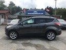 Used 2016 Ford Escape Titanium for sale in Flesherton, ON