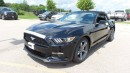 New 2017 Ford Mustang V6 for sale in Stratford, ON